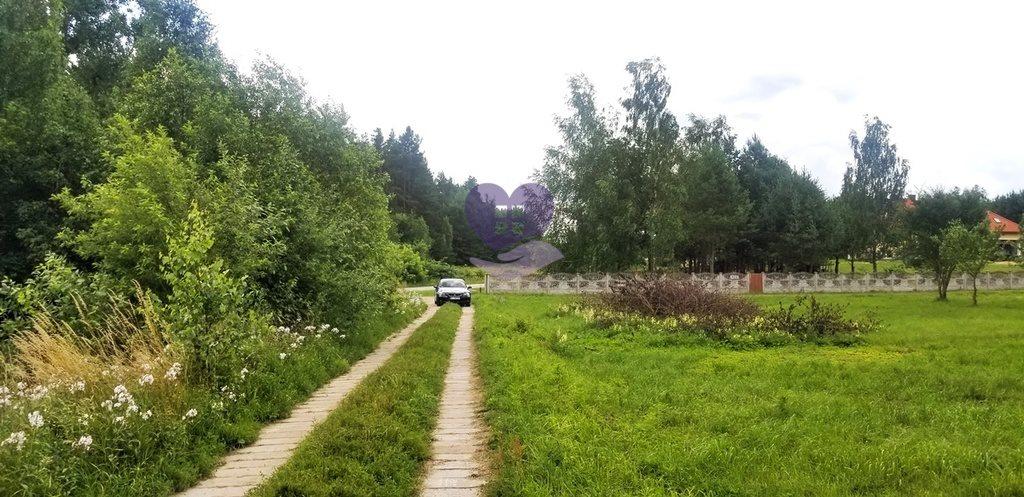 Działka inna na sprzedaż Studzianki, Wasilkowska  3536m2 Foto 10