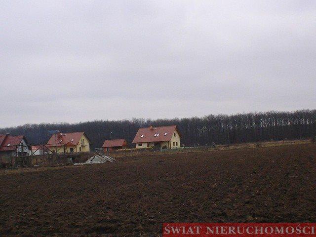 Działka budowlana na sprzedaż Kotowice  2000m2 Foto 8
