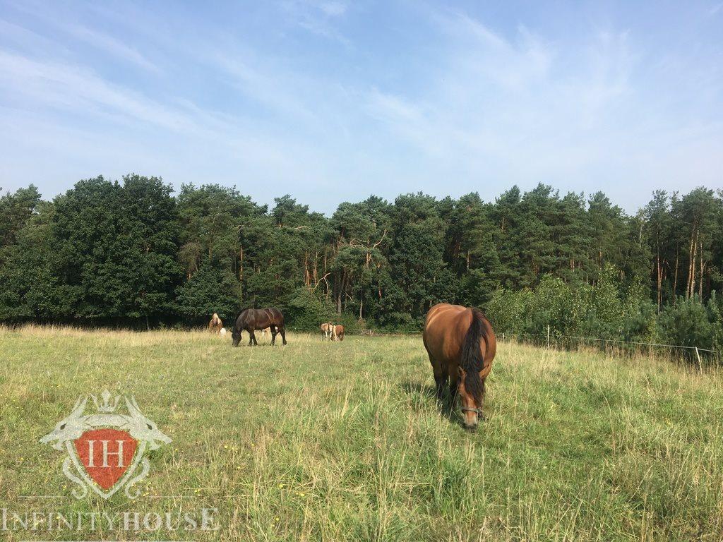 Działka rolna na sprzedaż Jaskółowo  56700m2 Foto 3