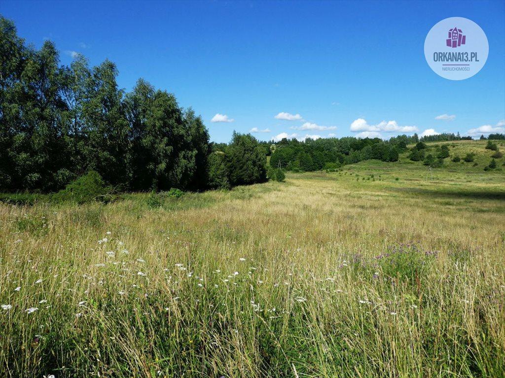 Działka rolna na sprzedaż Orzechowo, gmina Dobre Miasto  17399m2 Foto 4