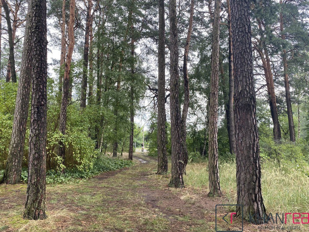 Działka leśna z prawem budowy na sprzedaż Józefów  2860m2 Foto 7