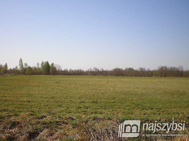 Działka rolna na sprzedaż Szczecin, Skolwin  10581m2 Foto 4