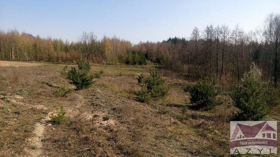 Działka rolna na sprzedaż Lubcza  5000m2 Foto 3