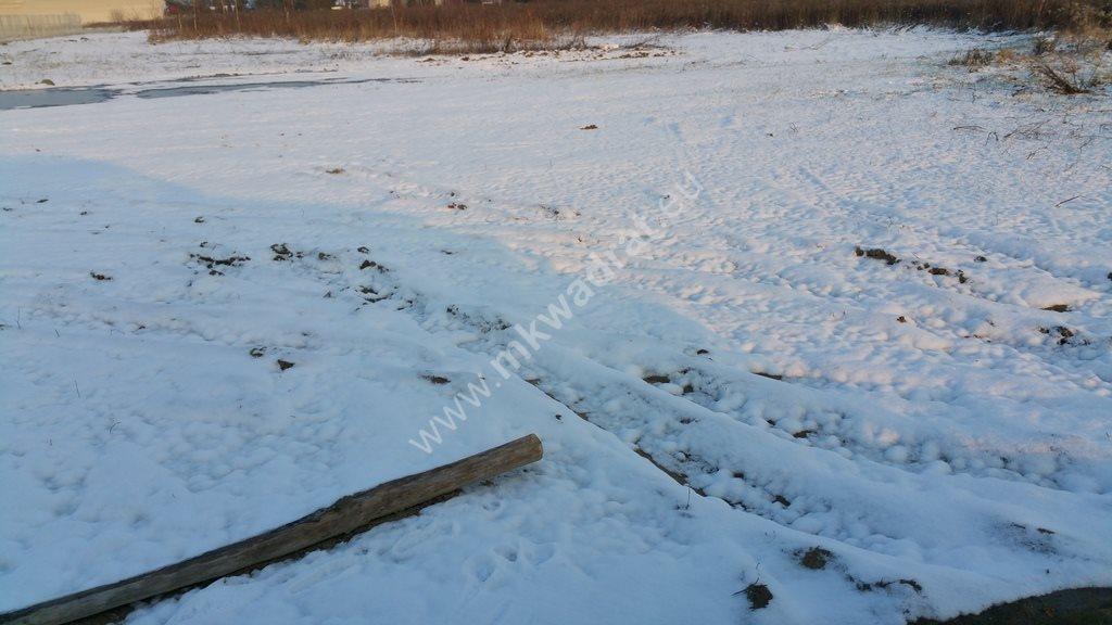 Działka inwestycyjna na sprzedaż Kajetany, Klonowa  10064m2 Foto 4