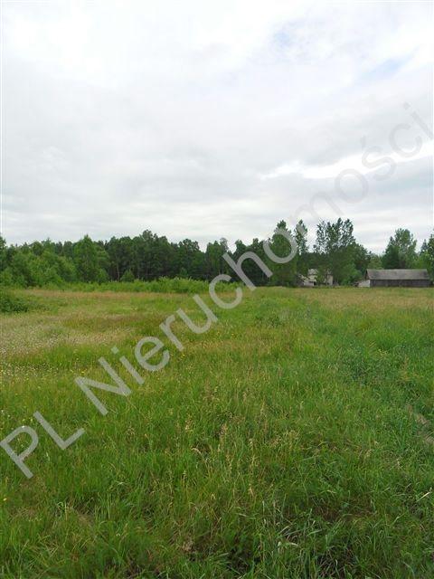 Działka rolna na sprzedaż Stanisławów  26000m2 Foto 2