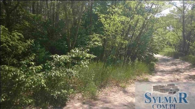 Działka leśna na sprzedaż Góra Kalwaria, Ługówka, Leśna  10488m2 Foto 4