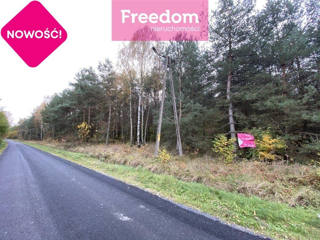 Działka leśna na sprzedaż Patok  16806m2 Foto 2