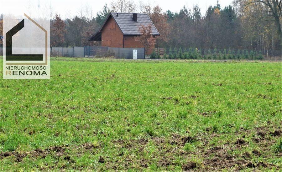 Działka rolna na sprzedaż Rościnno, , Rościnno, Skoki, Wągrowiec, Poznań  40982m2 Foto 6