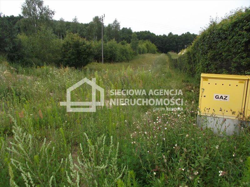 Działka budowlana na sprzedaż Bielkówko  5900m2 Foto 1