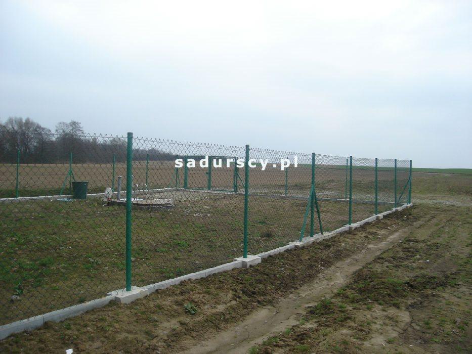 Działka inwestycyjna na sprzedaż Morawica  10000m2 Foto 5