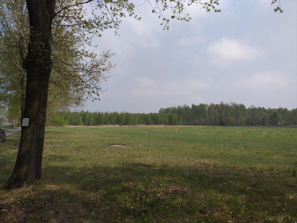 Działka budowlana na sprzedaż Sochaczew, Okopy  1000m2 Foto 4