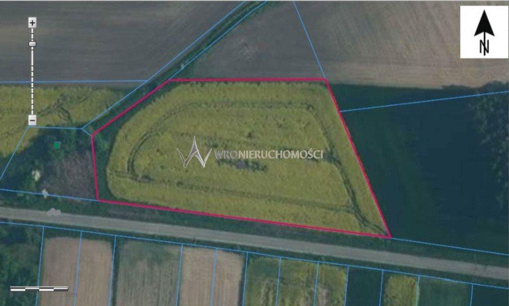 Działka rolna na sprzedaż Suchowice  8800m2 Foto 1