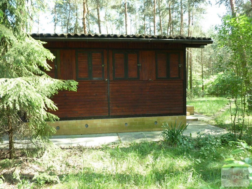 Działka rekreacyjna na sprzedaż Bechcice-Kolonia  963m2 Foto 4