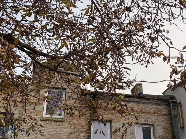 Dom na sprzedaż Warszawa, Ursus, Stary Ursus  380m2 Foto 2