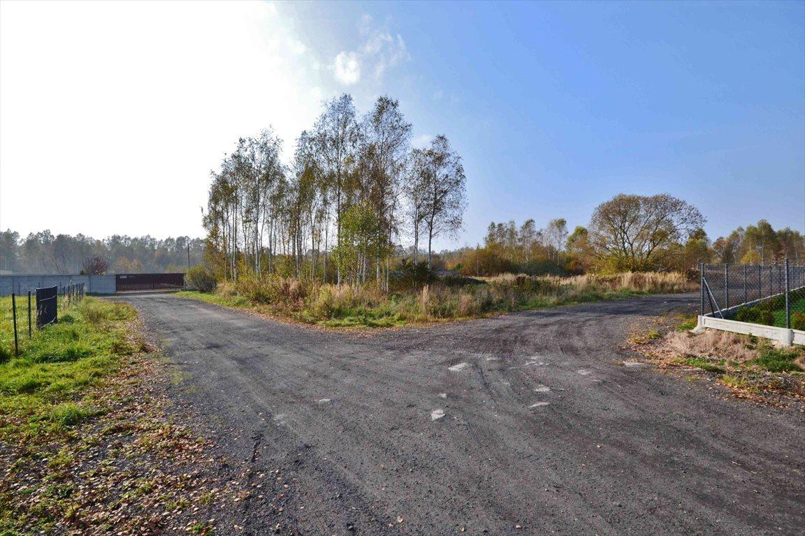 Działka budowlana na sprzedaż Brzeziny-Kolonia  1042m2 Foto 5