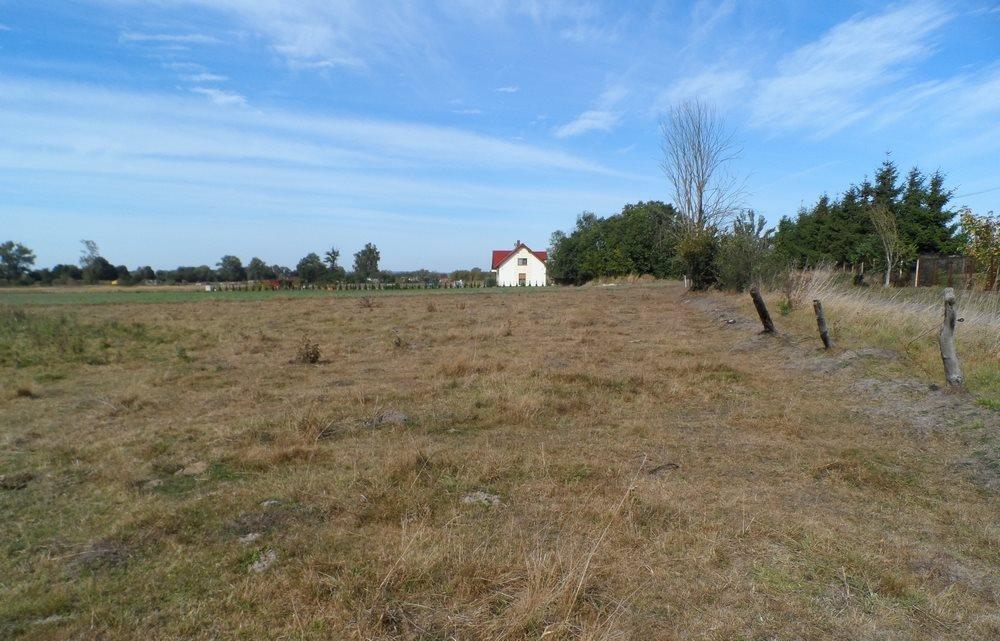 Działka siedliskowa na sprzedaż Nieborowo  11700m2 Foto 3