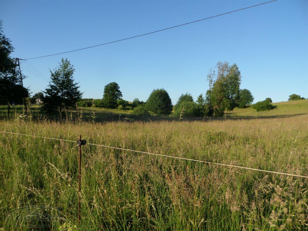 Działka rolna na sprzedaż Stare Kawkowo  3206m2 Foto 3