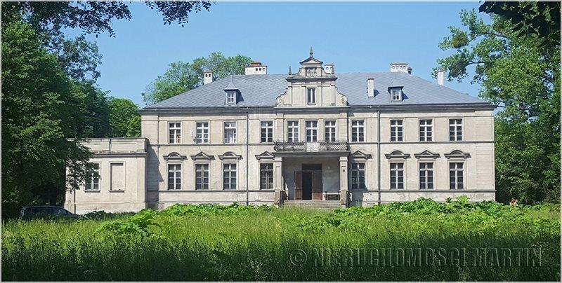 Luksusowy dom na sprzedaż Niegolewo  800m2 Foto 1