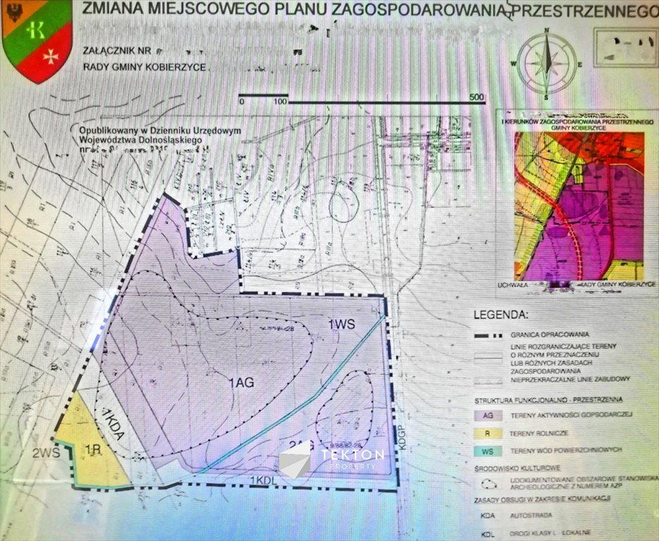 Działka przemysłowo-handlowa na sprzedaż Domasław, Południowa  24591m2 Foto 5