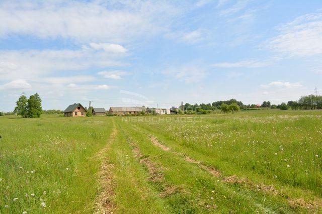 Działka rolna na sprzedaż Dobrzyniewo Kościelne  3196m2 Foto 4