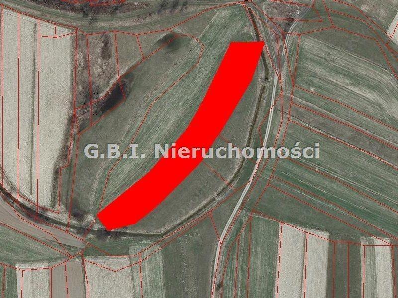 Działka rolna na sprzedaż Babice  4228m2 Foto 1