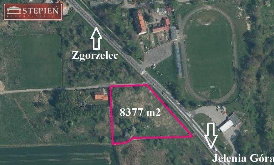 Działka budowlana na sprzedaż Gryfów Śląski  8377m2 Foto 6