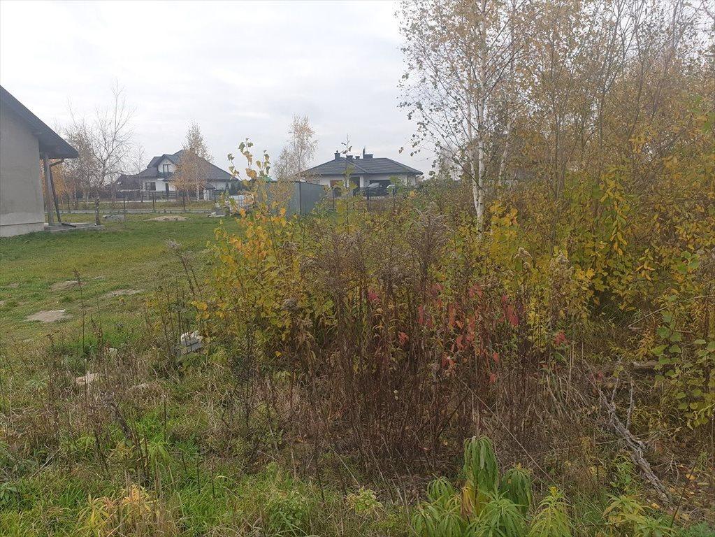 Działka budowlana na sprzedaż Zaborówek  1015m2 Foto 6