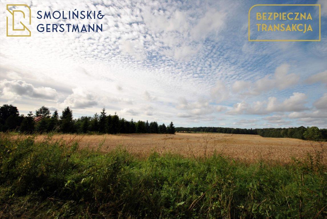 Działka rolna na sprzedaż Borkowo Lęborskie  10592m2 Foto 2