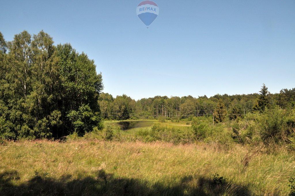 Działka leśna na sprzedaż Objezierze  244300m2 Foto 1