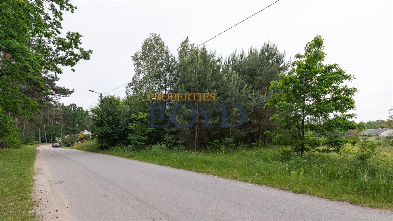 Działka rolna na sprzedaż Kociołki, Kociołki  3229m2 Foto 2