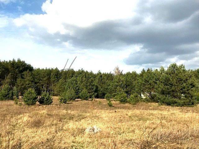 Działka budowlana na sprzedaż Góra Kalwaria, Krzaki Czaplinkowskie, Okrężna  5300m2 Foto 2