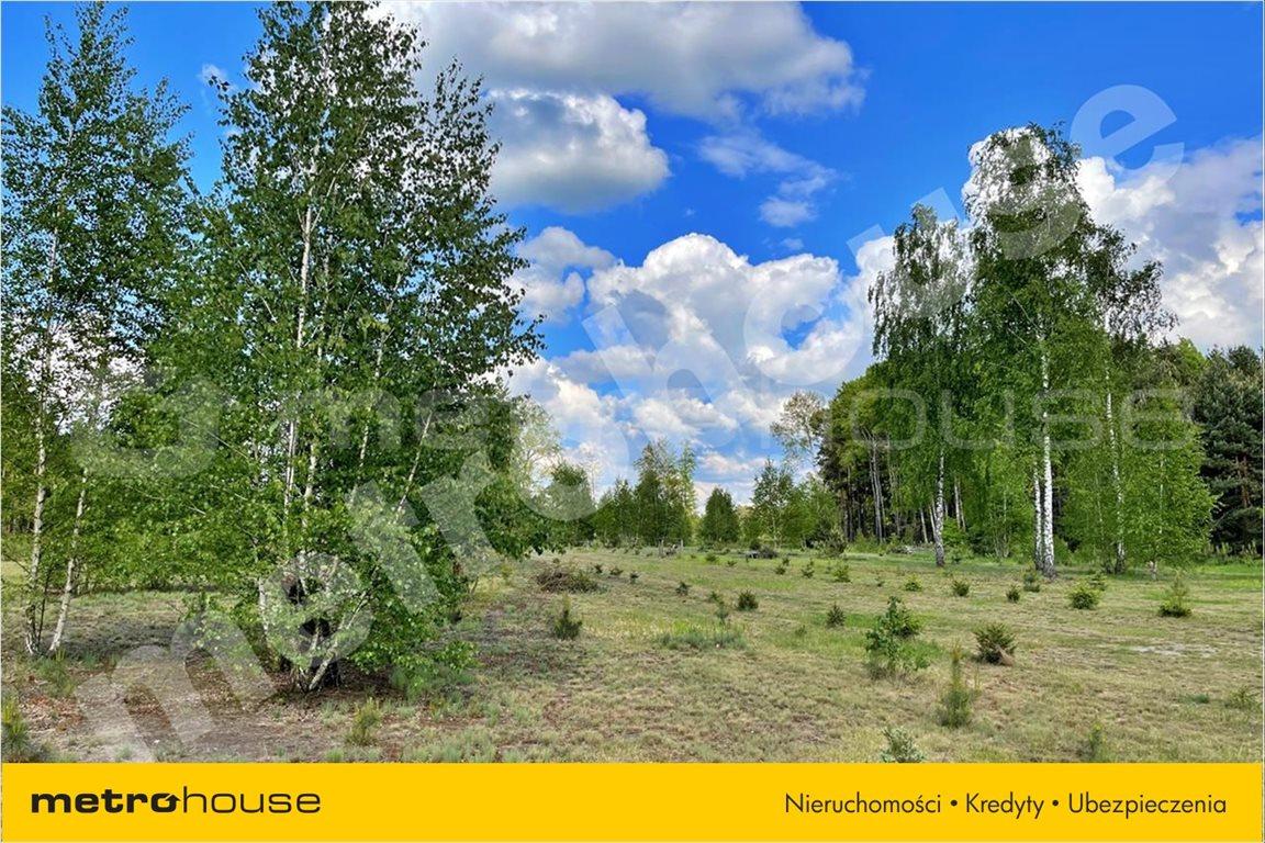 Działka leśna na sprzedaż Chełsty, Różan  80000m2 Foto 2