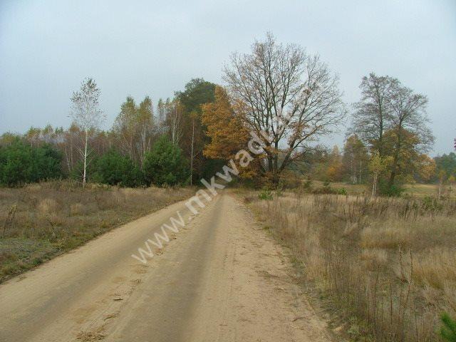 Działka budowlana na sprzedaż Nowe Polesie  10000m2 Foto 5