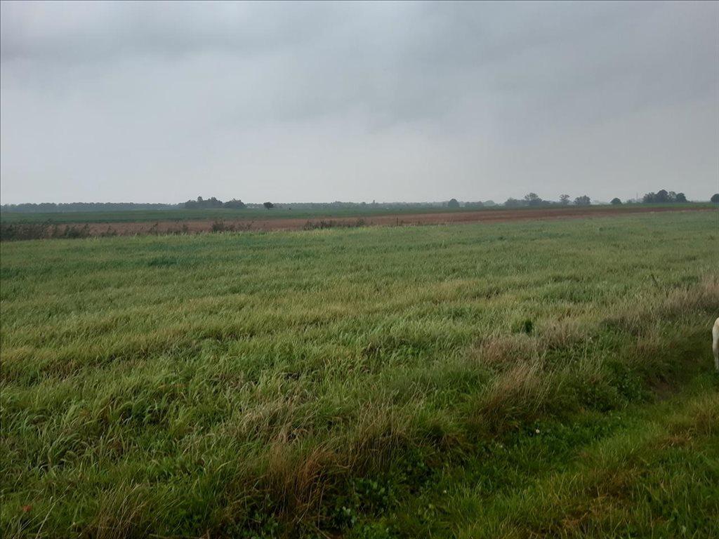 Działka rolna na sprzedaż Mielenko, Mielno  3020m2 Foto 7
