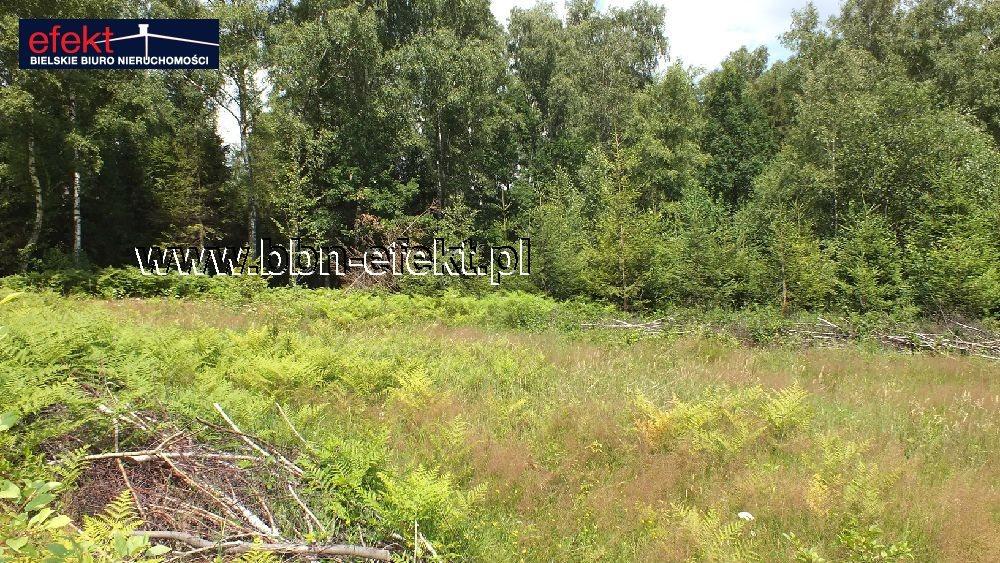 Działka budowlana na sprzedaż Buczkowice  3900m2 Foto 4