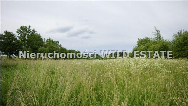 Działka rolna na sprzedaż Lesko  5784m2 Foto 4