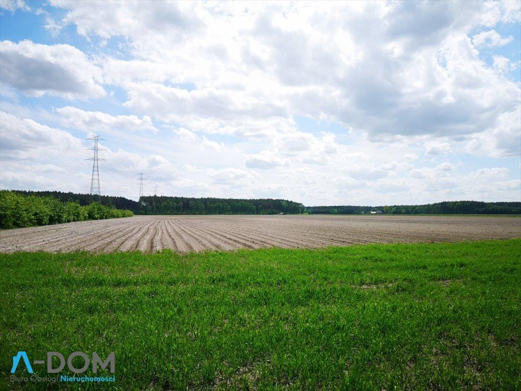 Działka rolna na sprzedaż Podlesie  100000m2 Foto 4