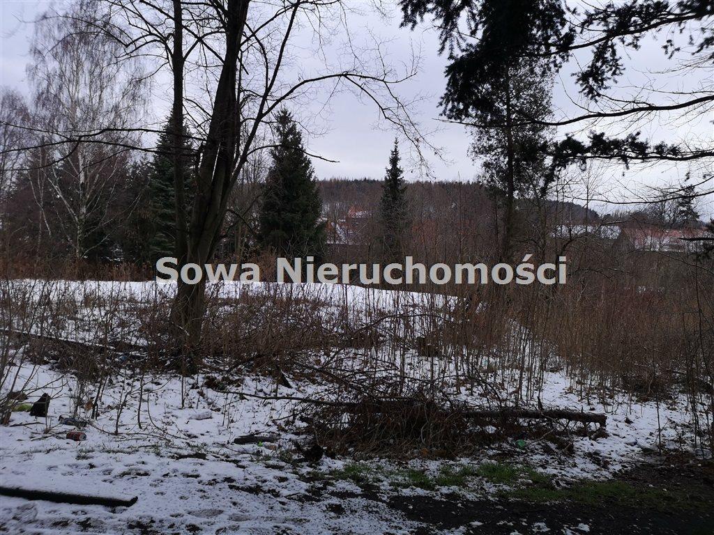 Działka inna na sprzedaż Wałbrzych, Biały Kamień  6000m2 Foto 10