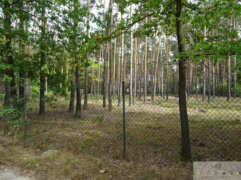 Działka leśna na sprzedaż Dziektarzew  2537m2 Foto 4