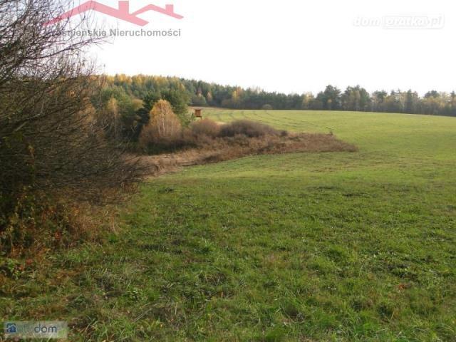 Działka rolna na sprzedaż Dukla  125100m2 Foto 2
