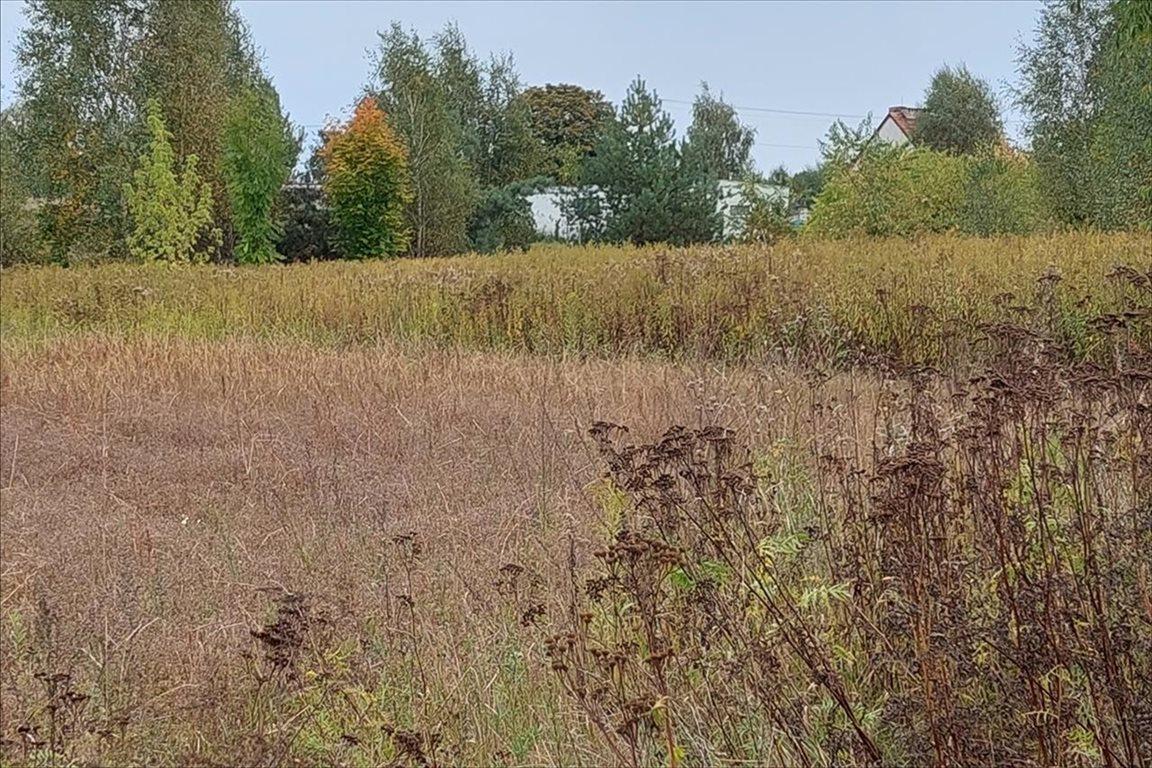 Działka rolna na sprzedaż Toporzysko, Zławieś Wielka  960m2 Foto 3