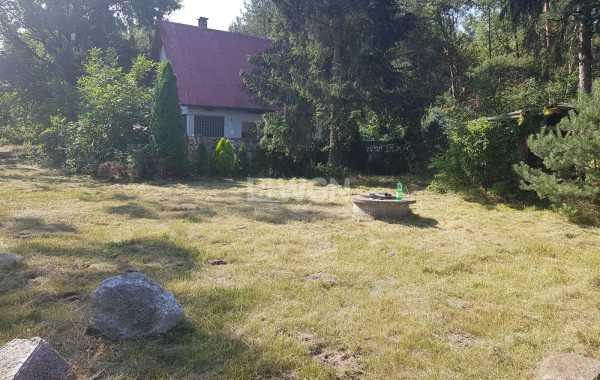 Działka leśna na sprzedaż Radomsko, Ładzice, Brodowe  11600m2 Foto 1