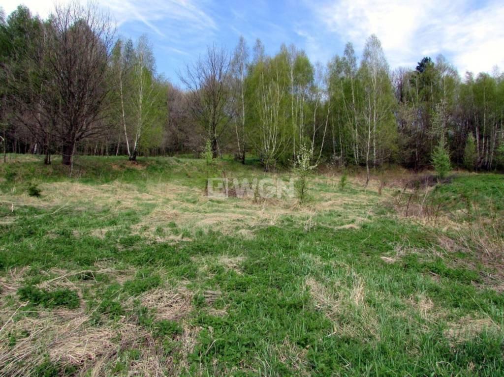 Działka inwestycyjna na sprzedaż Nowy Borek, Nowy Borek, Nowy Borek  5019m2 Foto 5