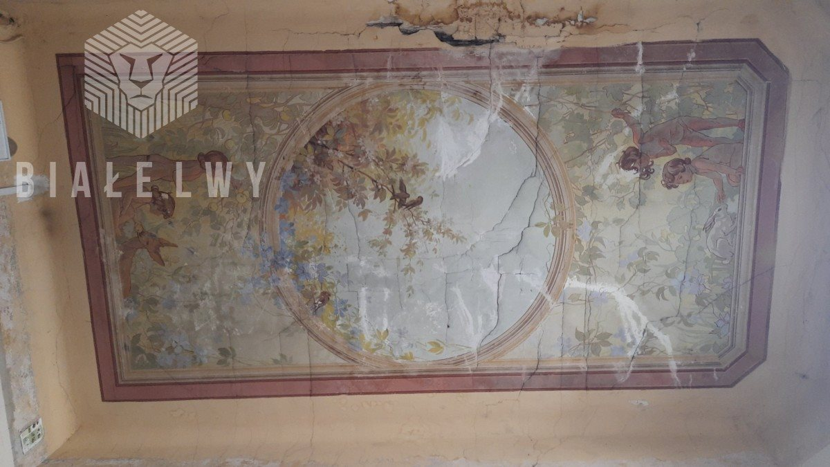 Lokal użytkowy na sprzedaż Radom, Stefana Żeromskiego  1291m2 Foto 5