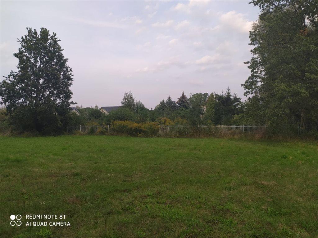 Działka budowlana na sprzedaż Łódź, Bałuty  3100m2 Foto 9