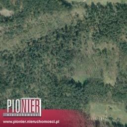 Działka rolna na sprzedaż Daleszewo  34800m2 Foto 3