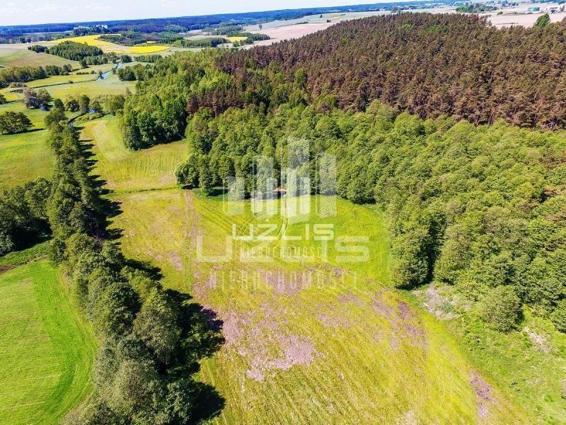 Działka rolna na sprzedaż Czarnocin  5900m2 Foto 3