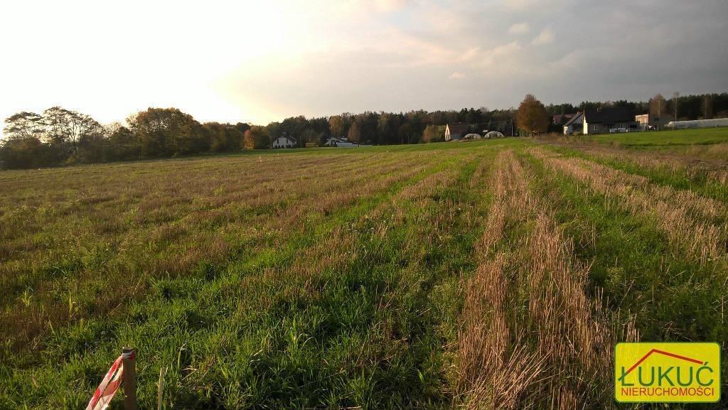 Działka rolna na sprzedaż Żołędowo, Pod Lasem  875m2 Foto 6