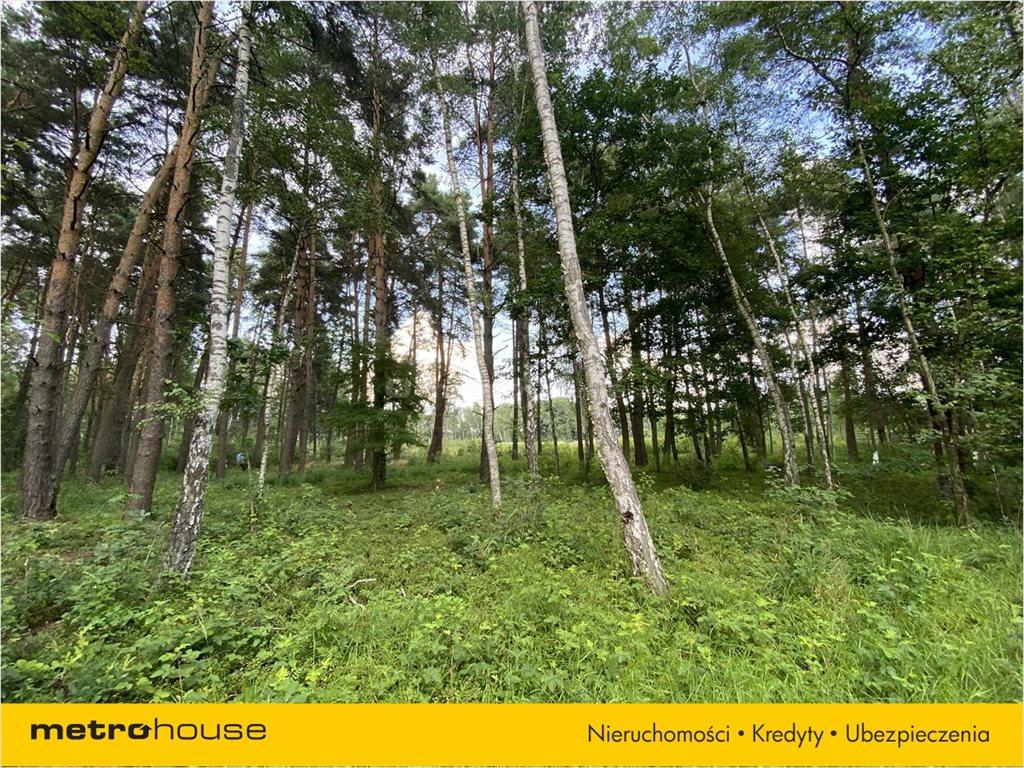 Działka leśna na sprzedaż Władysławów, Lesznowola  3128m2 Foto 2