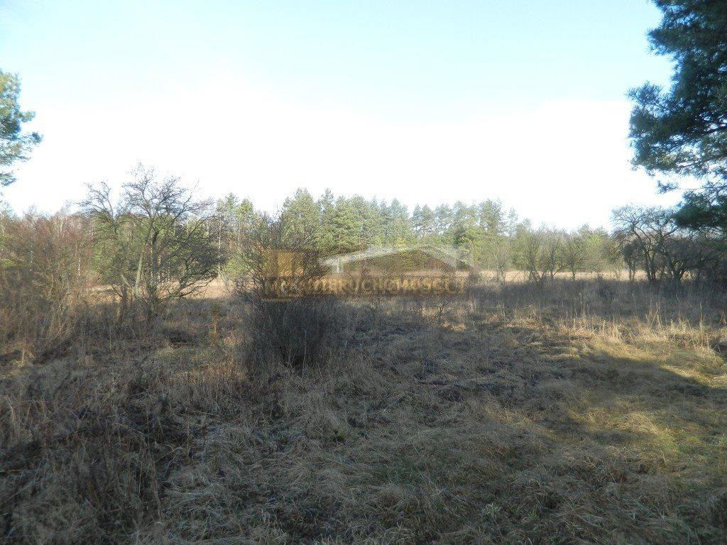 Działka budowlana na sprzedaż Ogrodzieniec, Józefów  7519m2 Foto 2